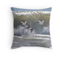 Piping Plovers in Flight Throw Pillow