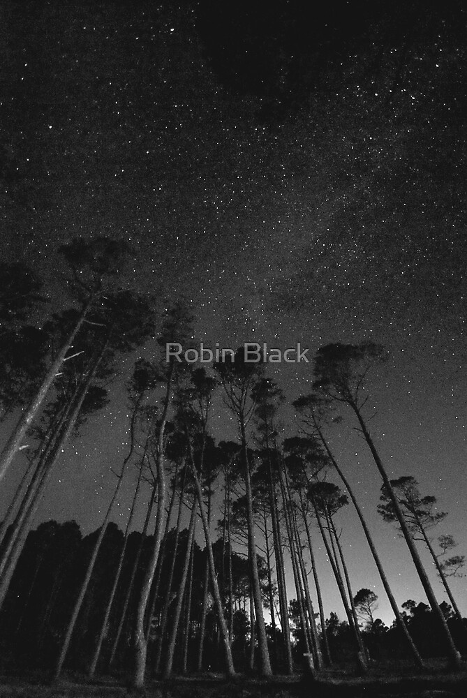 The Milky Way by Robin Lee