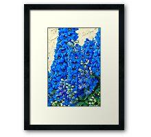 Blue, Blue Delpheniums Framed Print