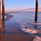 Under the Boardwalk by Robin Lee