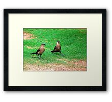 Wacky Grackles Walking in the Park Framed Print