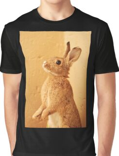 a bunny named milo Graphic T-Shirt