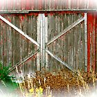 Red Barn Doors by FedericoArts