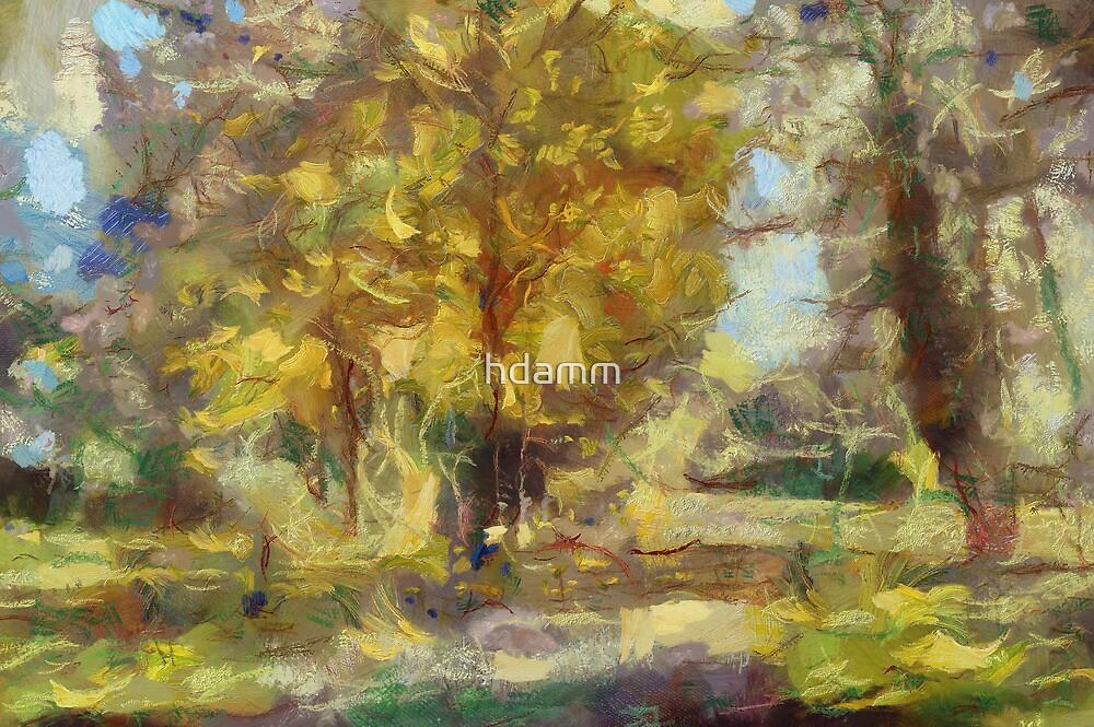 Autumn Trail by hdamm