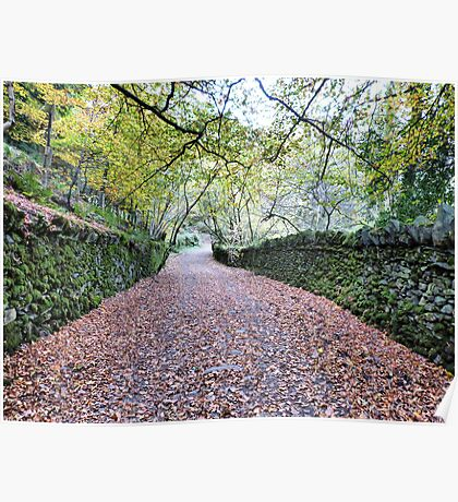 Leafy Lanes.  Poster