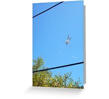 Beach Spider Two - 21 10 12 Greeting Card