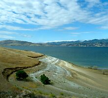 Reservoir of Beauty by skyhat