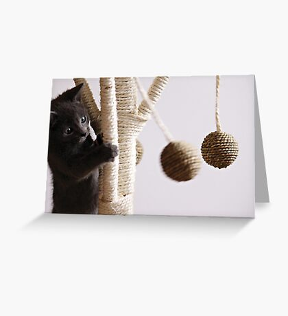In between naps  Greeting Card