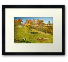 Getting ready for winter Framed Print