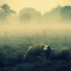 And Dream of Sheep - JUSTART © by JUSTART