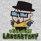 Walter&#x27;s Laboratory by ScottW93