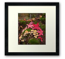 Autumn Floor Framed Print