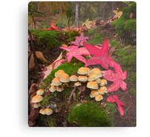 Autumn Floor Metal Print