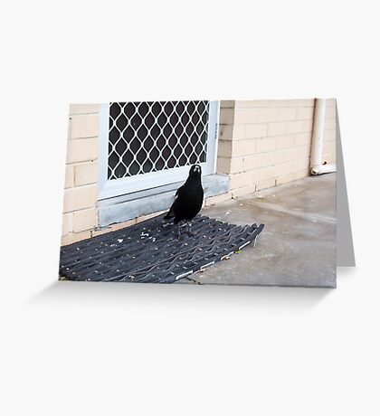 Magpie One - 22 10 12 Greeting Card