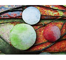 The Planets Photographic Print