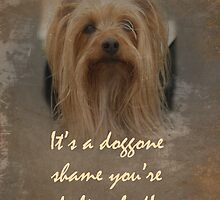 Get Well Greeting Card - Sorry You're Sick - Yorkshire Terrier by MotherNature