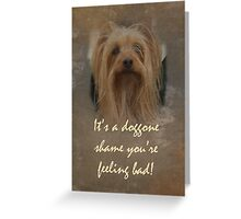 Get Well Greeting Card - Sorry You're Sick - Yorkshire Terrier Greeting Card