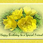 Special Friend Birthday Greeting Card - Yellow Primrose by MotherNature