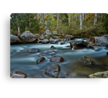 The River Wild Canvas Print