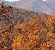 Blue Ridge Parkway / Fall by JeffeeArt4u