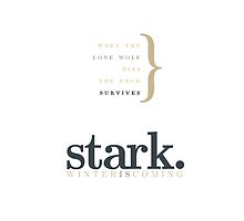 House Stark by bericed