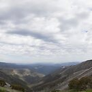 View From Mount Hotham  by Bevlea Ross