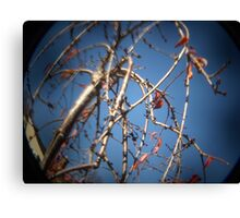 Photo 2.2: Songs of Distant Earth Canvas Print