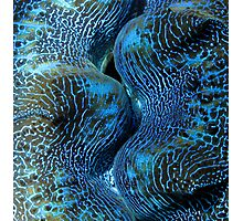 Blue Matrix Photographic Print