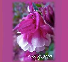 Wedding Blessings Greeting Card - Columbine Blossom by MotherNature
