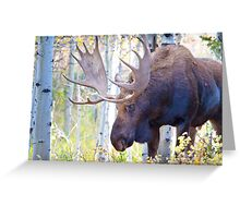Sad Ending For A Stunning Bull Moose Greeting Card