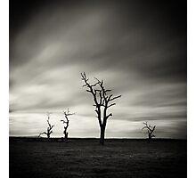 Skeletons Photographic Print