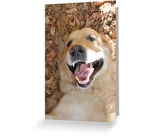 The Happiest Dog in the World Greeting Card