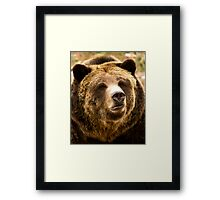 Only You Can Prevent Forest Fires Framed Print
