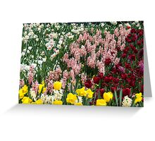 Colourful garden bed Greeting Card