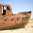 The Aral Sea ships by hellomrdave