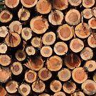Logs by hellomrdave