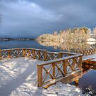 First Snow - HDR by ilpo laurila