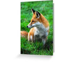fox 3 Greeting Card
