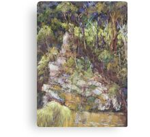 Ellenborough River - plein air Canvas Print