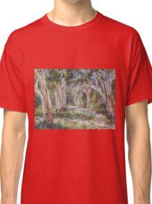 Lake Innes Nature Reserve 2 - plein air Classic T-Shirt