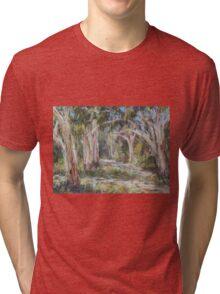 Lake Innes Nature Reserve 2 - plein air Tri-blend T-Shirt