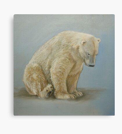Polar bear sitting Canvas Print