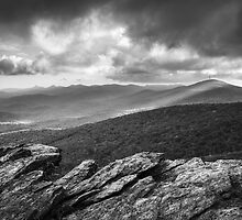 Rough Ridge Grandfather Mountain Blue Ridge Parkway - Remains of the Day by Dave Allen