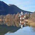 Alpsee - Algau - Germany by Arie Koene