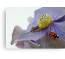 Living in Perfect Harmony Canvas Print
