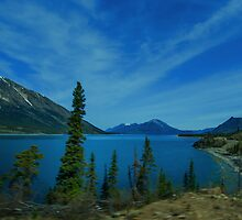 Lake Bennett Looking North by Yukondick