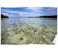 Starfish in ocean, Vanuatu, South Pacific Ocean Poster