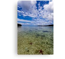 Starfish in ocean, Vanuatu, South Pacific Ocean Canvas Print