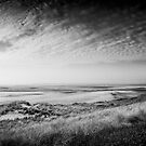 beach by photo-kia