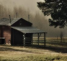 Country Morning, Franklin County, NC by Denise Worden